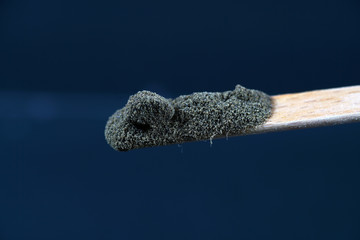 Chemical powder from the chemistry kit with macro lens photographed in studio