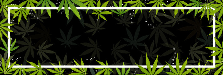 green cannabis leaf drug marijuana herb Background.