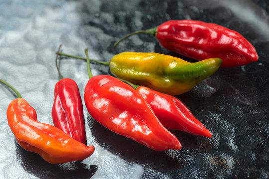 Peruvian hot pepper called Limo Pepper.
