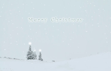 Christmas background of pine trees covered in snow and text above them
