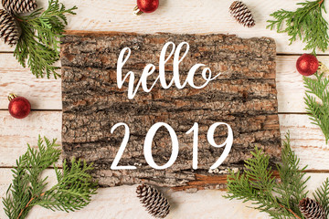 HELLO 2019 greeting card.  New Year and Christmas  concept
