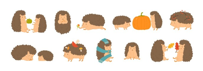 Collection of adorable hedgehogs carrying mushrooms and berries, playing with autumn leaves, sleeping. Set of cute forest animals isolated on white background. Flat cartoon vector illustration.