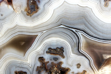 Closeup of a banded Agate specimen. The layered structure is formed when a rock cavity or geode is filled with siliceous matter, layer by layer.