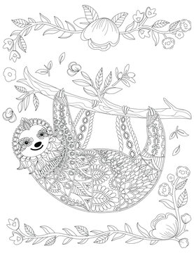 Vector ornate cute sloth on the tree, coloring page design. Hand drawn animal coloring book for adult. Zentangle sloth print with floral and geometric elements. Line art