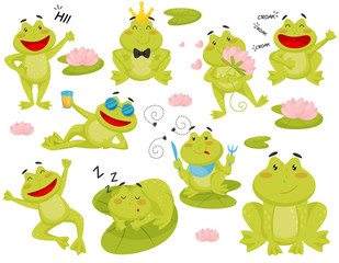 Flat vector set of frog in different actions. Cartoon character of funny green toad