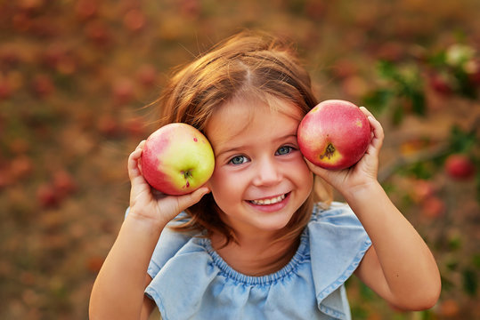 Girl in Apple Orchard. Beautiful Girl Eating Organic Apple in Orchard. Harvest Concept. Garden, Toddler eating fruits at fall harvest. Child picking apples on farm in autumn. Healthy nutrition