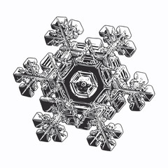 Snowflake isolated on white background. Vector illustration based on macro photo of real snow crystal: elegant star plate with six short, broad arms, glossy relief surface and complex inner details.