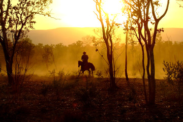 The Lone Horseman - Kimberley Cattle Muster