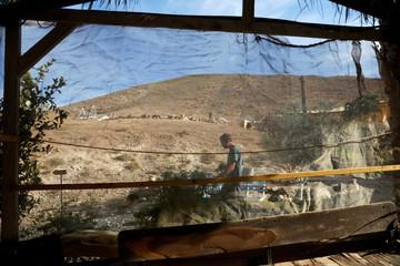 David Davidson, owner of Khan Eretz Ha'Mirdafim resort, walks through the camp near Alon settlement in the occupied West Bank