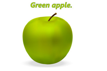Realistic 3d Green Apple with realistic shadows on white background. Vector illustration.