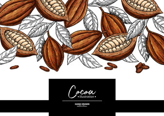 Cocoa frame. Vector superfood drawing template. Fruit, leaf and bean engraving. Organic healthy food