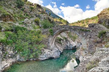 Poster Kaki Old Genovese bridge near Asco (Corsica)