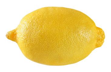 Lemon is a yellow one citrus fruit isolated on white background with clipping path.