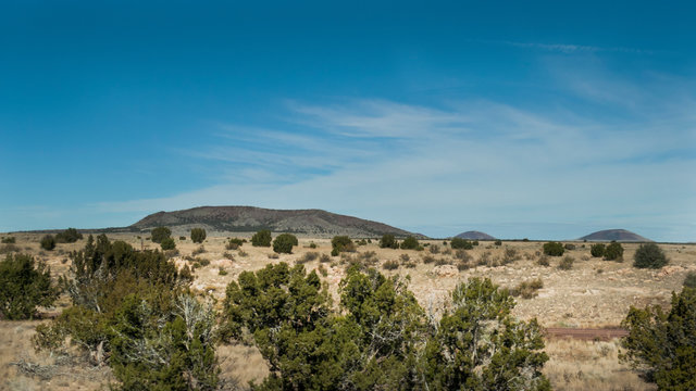 Landscape in the desert near Winslow, Arizona with desert and trees and mountains