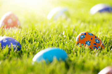 Easter eggs lying on green spring grass