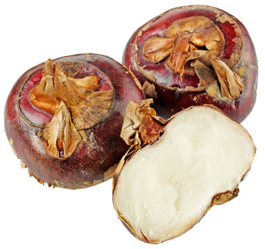 THREE WATER CHESTNUTS  CUT OUT