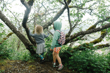Two girls walking in a forest