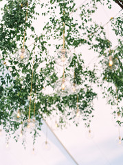 Green leaves and hanging lights inside of a tent during a wedding reception