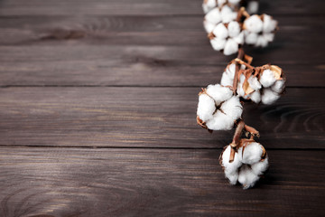 Branch of white cotton flowers on brown wooden table with copy space