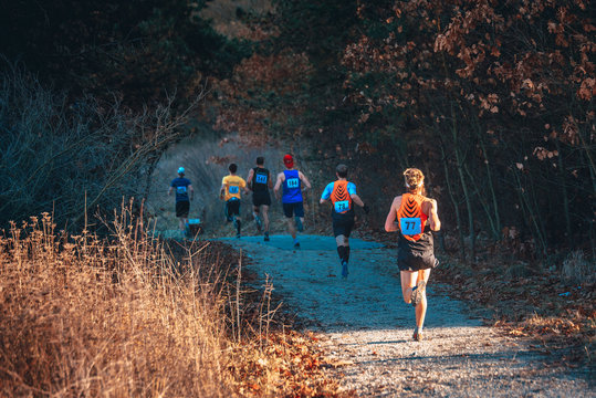 Trail race, cross country athlete in nature