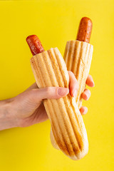 Two grilled french hot dogs in woman's hand