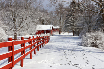 Beautiful winter nature background. Rural landscape with red barns, wooden red fence and trees covered by fresh snow in sunlight. Scenic winter view at Wisconsin, Midwest USA, Madison area.