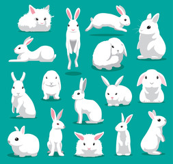 Cute White Rabbit Poses Cartoon Vector Illustration
