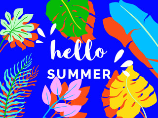 Hello summer banner/background template design, tropical plants on blue background, colorful vibrant tones