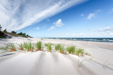 In the dunes of the Baltic see.