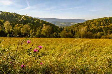 Bieszczady Mountains, Lutowiska, Poland. View from viewpoint near Lutowiska town in sunny day.