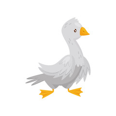 Flat vector icon of adult goose. Farm bird with white feathers, orange beak and legs. Domestic fowl