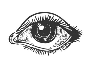 Human eye engraving vector illustration. Scratch board style imitation. Black and white hand drawn image.