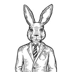 Rabbit hare businessman engraving vector illustration. Scratch board style imitation. Black and white hand drawn image.