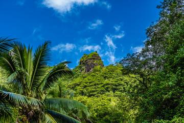 MONTAGNE DE TAHITI