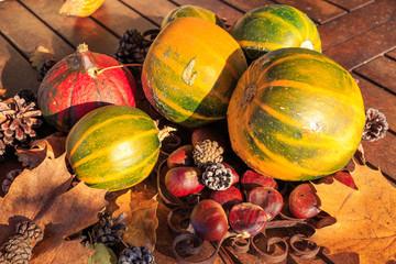légume de saison au couleur de l'automne à la campagne