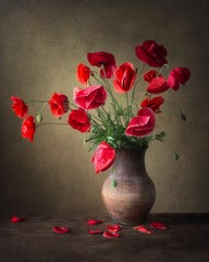 Still life with bouquet of beautiful red poppy flowers