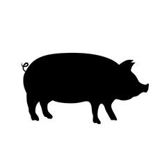 Pig vector icon.