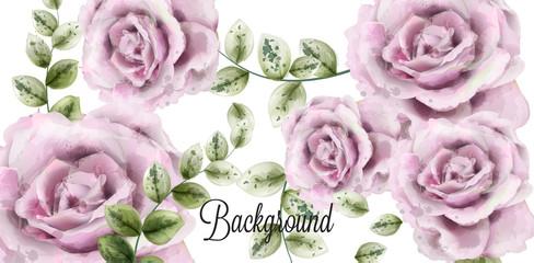 Delicate pink roses Vector watercolor background. Elegance flowers wallpaper. Vintage decorative bouquets