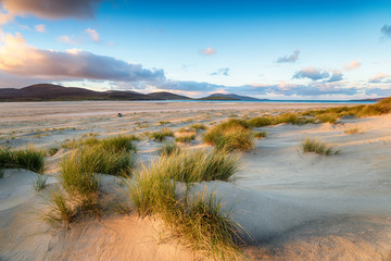Morning at Luskentyre Beaach