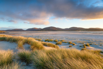 Fototapete - Luskentyre beach on the Isle of Harris