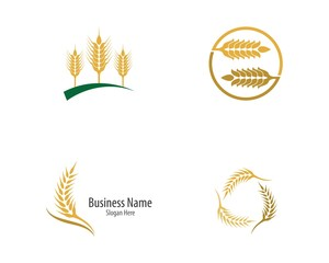 Wheat logo vector icon illustration