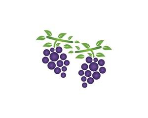 Grape icon logo template vector