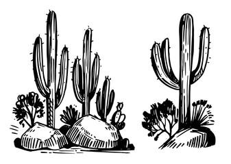 Sketch of the desert of America