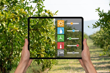 A farmer is holding a tablet on the background of a fruit tree. Smart farming and digital agriculture concept