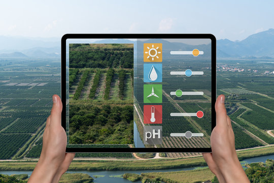 A farmer is holding a tablet on the background of agricultural valley. Smart farming and digital agriculture concept