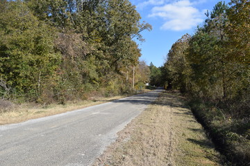 Old Oxford Road in Marshall County Mississippi
