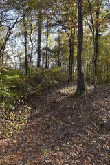 Civil War Earthworks at Tallahatchie Crossing site of Union forces in Mississippi