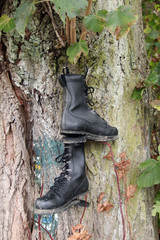 Old hiking shoes hung on a tree