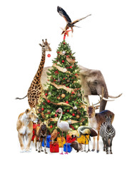 Fototapete - zoo Animals Decorating Christmas Tree