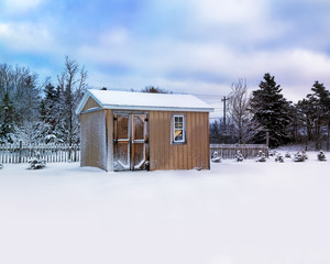 Small storage shed in a winter landscape.